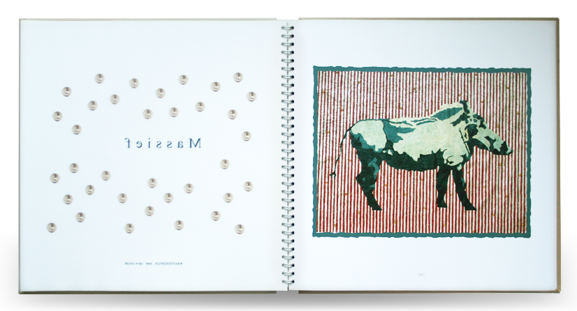 Splinterbeest kunstboek massief 02